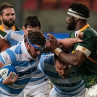 Australia to host rest of Rugby Championship after COVID-19 disruptions