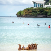 Tourists on the beach at Tumon Bay, Guam, in August 2017.  | NANCY BOROWICK / THE NEW YORK TIMES