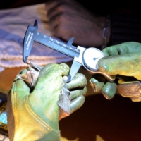 A chiropterologist measures a greater mouse-eared bat in Noyal-Muzillac, France, on July 9. | AFP-JIJI
