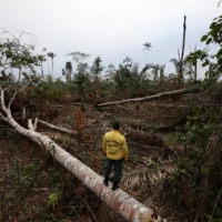 A deforested plot of Brazilian Amazon rainforest, in Apui, Amazonas state, on Sept. 4 | REUTERS
