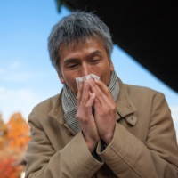 Butakusa (ragweed) and yomogi (Japanese mugwort) are both autumn plants that provoke allergic reactions in people with hay fever.  | GETTY IMAGES