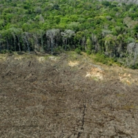 A deforested area close to Sinop in Brazil's Mato Grosso State in August 2020 | AFP-JIJI