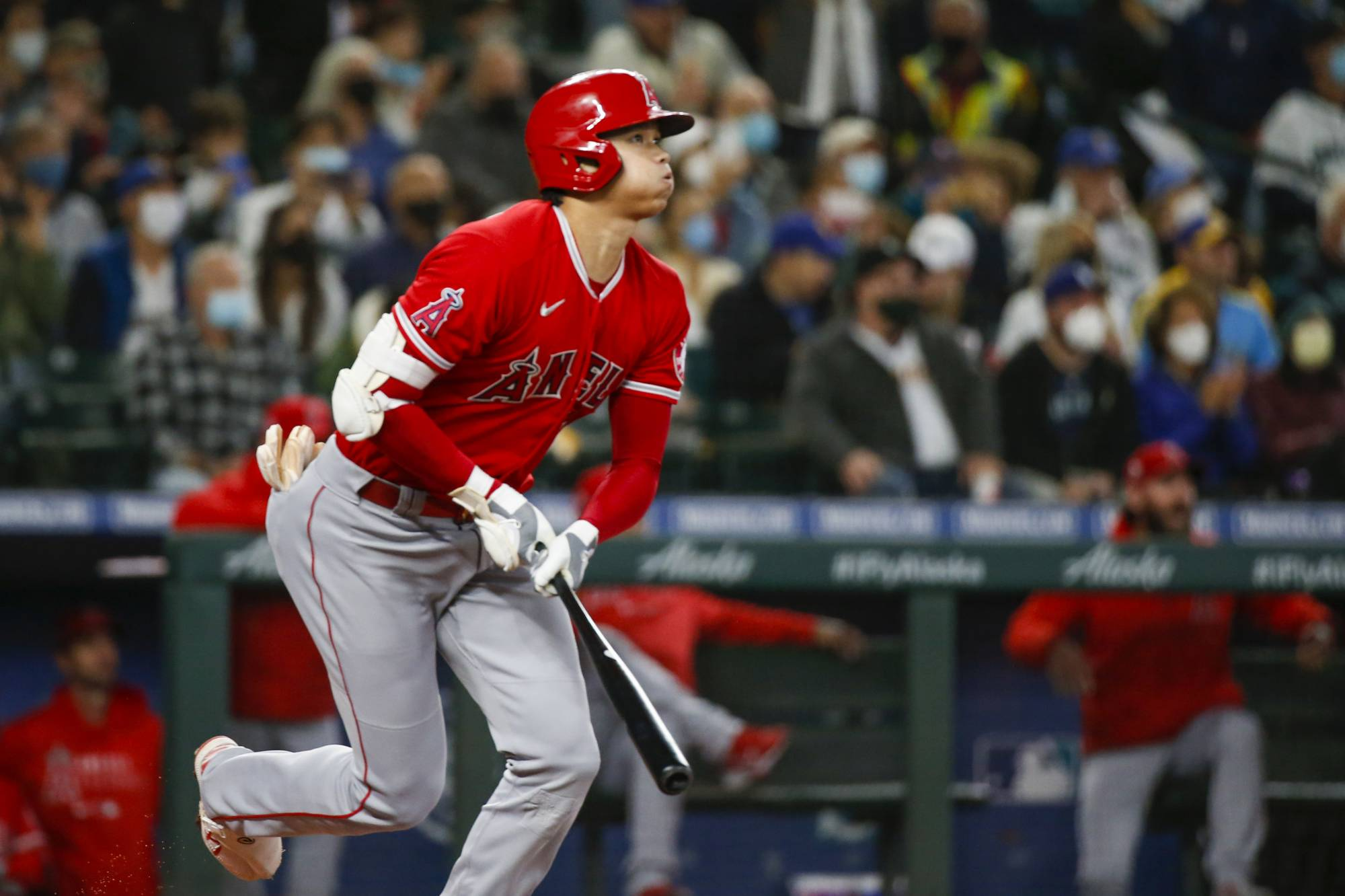 Shohei Ohtani is widely expected to be named AL MVP this fall.  | USA TODAY / VIA REUTERS